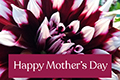 Donation eCard: Mother's Day